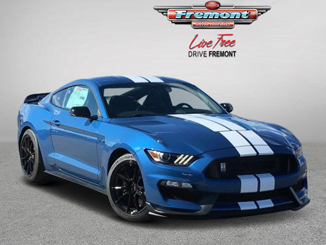Ford Mustang Shelby >> New 2019 Ford Mustang Shelby Gt350 With Navigation
